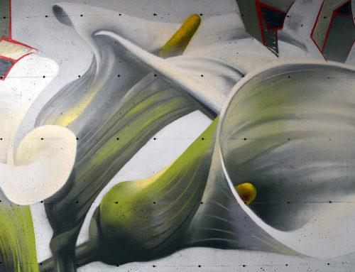 Murali – Barcaccia underground 2 – Forlì
